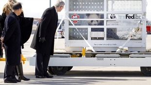 Canadian Prime Minister Stephen Harper (R) welcomes the new arrivals at Pearson International airport in Toronto