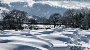 Snow drifts carved by strong winds