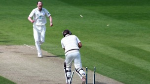 Alan Richardson will once again shoulder the wicket-taking burden for Worcestershire