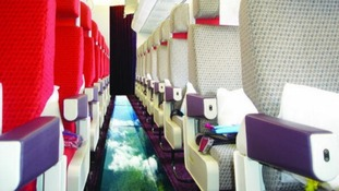 A prank picture of how the glass-bottomed plane will look