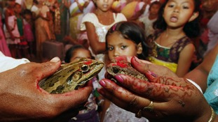Children watch a frog marriage ceremony, performed to appease the Gods, on the outskirts of Guwahati in northern India