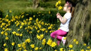 A girl enjoying the sunny weather in Shiremoor, North Tyneside