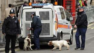Police sniffer dogs are deployed on Whitehall prior to the funeral service of Baroness Thatcher.