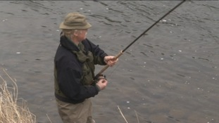 Salmon return to Wye & Usk after decades of decline