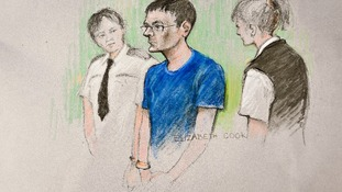Nicholas Lovell pleaded guilty to death by dangerous driving.