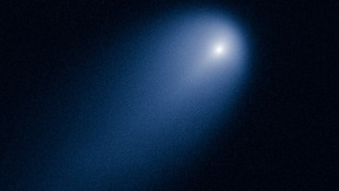 This image was taken in visible light. The blue false color was added to bring out details in the comet structure.