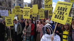 The March of the Beekeepers through Parliament Square