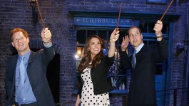 A wave with a difference as royals given Potter wands