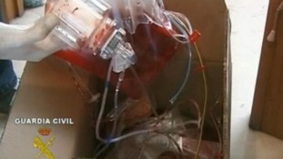 Police image of blood bags recovered from Dr Fuentes' clinic