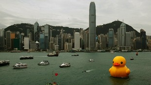 The rubber duck is the creation of Dutch conceptual artist, Florentijn Hofman.