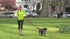 Nucy Naylor training in a London park with her dog.