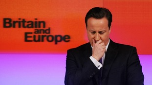 Prime Minister David Cameron made a major speech on Europe earlier this year in which he called for reform