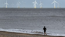 East Anglian coastline and biodiversity under threat from climate change