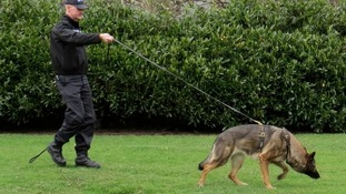 Award for South Yorkshire bobby and his police dog