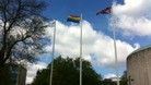 Council marks day against discrimination