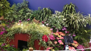 A Birmingham entry at The Chelsea Flower Show