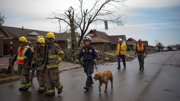 Rescue workers use a search dog while searching house-to-house for survivors.