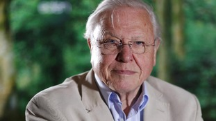 File photo of Sir David Attenborough
