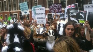Animal welfare supporters