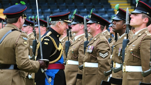 Image result for mercian regiment