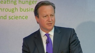 Prime Minister David Cameron speaking at the Nutrition Summit in London,