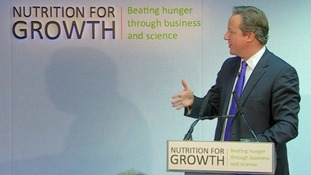 Prime Minister David Cameron addresses the nutrition summit in London.
