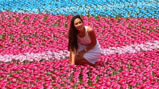 Each petal represents the two million children who die of hunger every year
