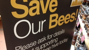 Why is a farm in Shropshire spending £10,000 on bees?