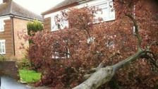 High winds caused damage to some homes in Rugby