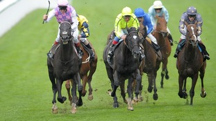 The horses running the Hardwicke Stakes. Thomas Chippendale is front left.