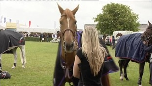 Sun shines for first day of Great Yorkshire Show