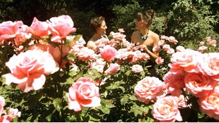 Friends look at the roses.