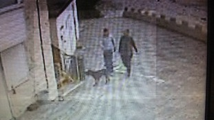 Police release CCTV after Chihuahua dies in dog attack
