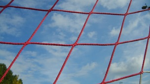 Goal net