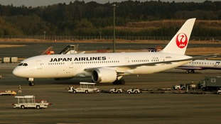 A file photo of a Japan Airlines Boeing 787 Dreamliner jet.