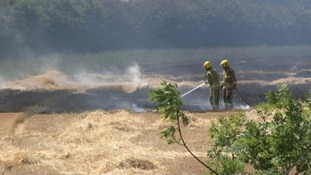 More than 25 firefighters were called to this field blaze at Swaffham in Norfolk yesterday afternoon