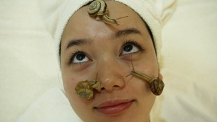 Snails crawl on the face of a customer during a demonstration