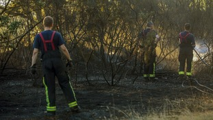 The aftermath of a forest fire caused by the heatwave on Hollow Ponds, in Leytonstone, east London.
