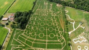 The York Maze has also been celebrating the anniversary with Daleks.