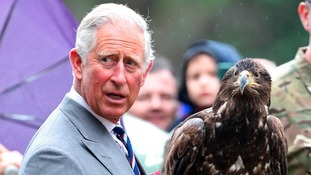 Pictures: Prince Charles gets a fright from a bald eagle