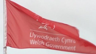 Campaigners to lobby First Minister at National Eisteddfod