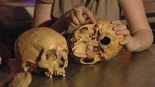 Scientist's work to discover skeletons mystery