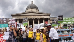 Protestors in Trafalgar Square for Compassion in World Farming march