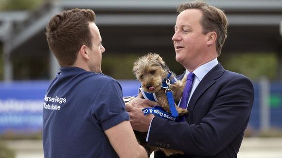 Σκύλος έφυγε από την αγκαλιά του Ντέιβιντ Κάμερον...