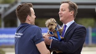 Prime Minister David Cameron takes Bertie, a nine month old Yorkshire Terrier from volunteer James Moore.