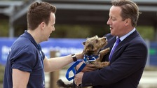 David Cameron holds Bertie - but not for long.
