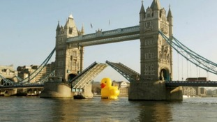 The giant 50 foot rubber duck floating down the Thames last year