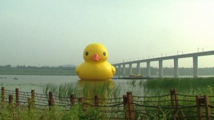 Giant duck arrives in Beijing's Yongding river