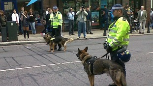 Police dogs at the start of the march