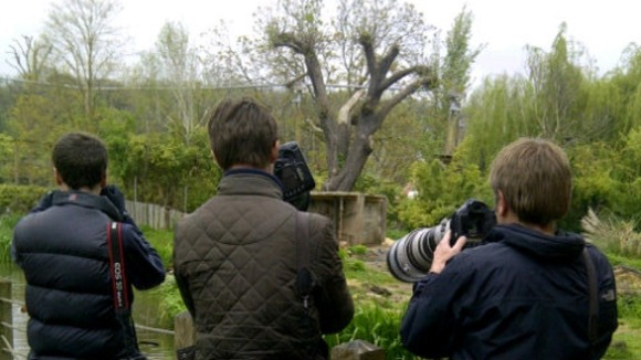 photographers at Bristol Zoo